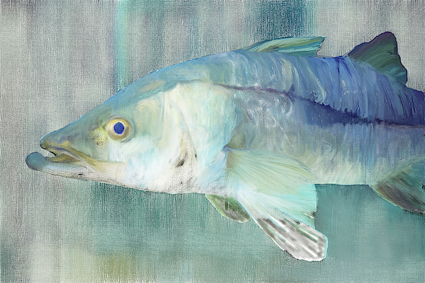 Snook Digital Painting by Gene Norris